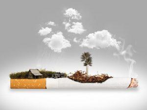 タバコを吸う生活